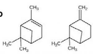 quimiotipo-cipres