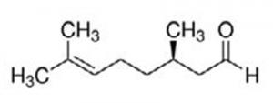 quimiotipo-citronella
