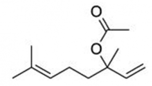 quimiotipo lavanda