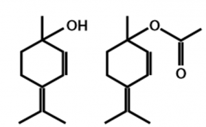 quimiotipo lavandin