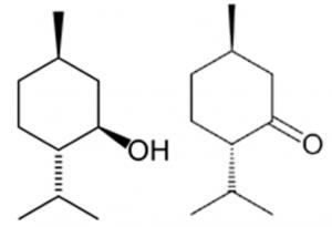 quimiotipo menta piperita